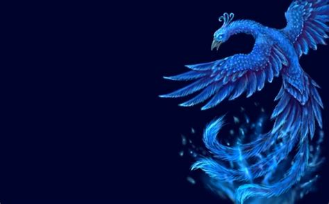 wallpaper blue phoenix phoenix fantasy abstract background wallpapers on