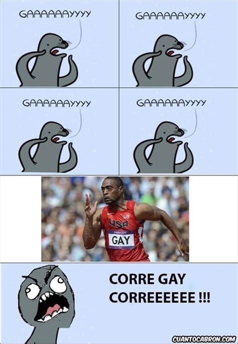 Gay Seal Meme Generator - gay seal meme generator 28 images gay seal meme