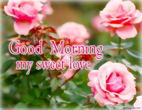images of love morning good morning wishes for love pictures images