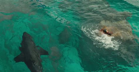 The Shallows the shallows review the best shark since jaws