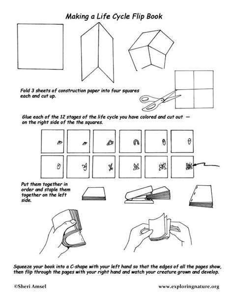 How To Make A Paper Flip Book - cycle flip books images frompo