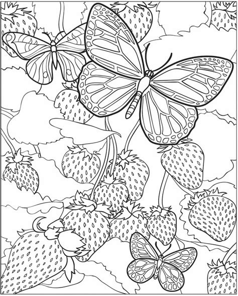 butterfly coloring pages for adults free detailed butterfly coloring pages