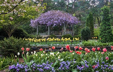 photos of gardens duke gardens a legacy of beauty lowe funeral home and