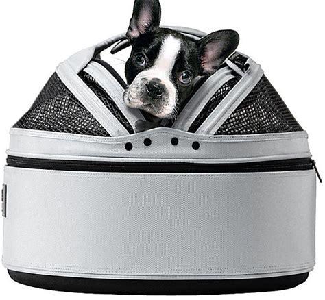 modern pet furniture accessories for design lovers modern pet furniture accessories for design lovers