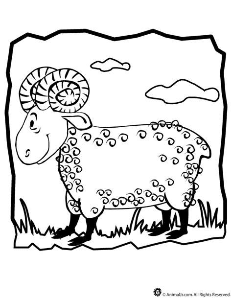 ram coloring page printable ram coloring page woo jr kids activities