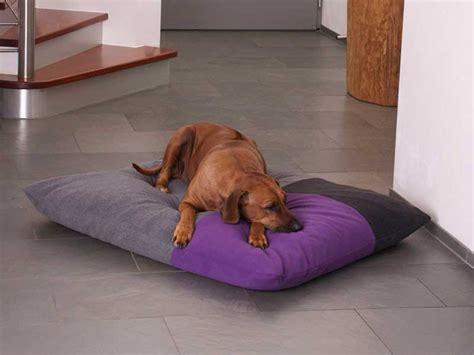 cuscini per cani prodotti per cani con un design eccellente dalla germania