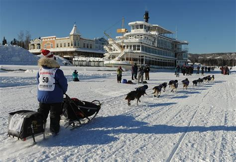 sled race iditarod sled race teams out into alaska s big chill eye on the arctic