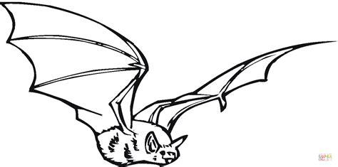 black bat coloring page fladdermus i flykten m 229 larbok gratis m 229 larbilder att