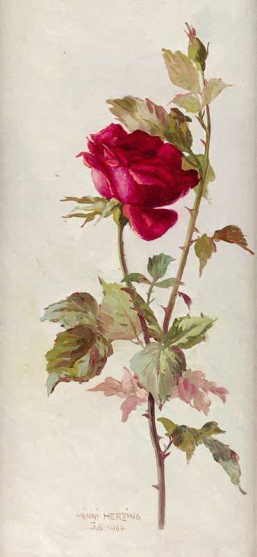 vintage roses beautiful varieties 512 best images about roses in art on