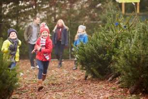 5 christmas tree farms in central arkansas little rock