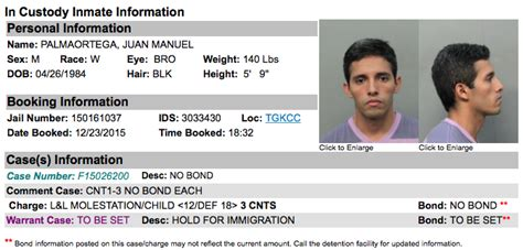 Inmate Record Charged With 3 Counts Of Felony Child Molestation In Miami Following Disney Magic