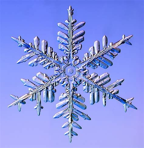 snowflake and snow crystal photographs real snowflakes christmas photo 9447600 fanpop