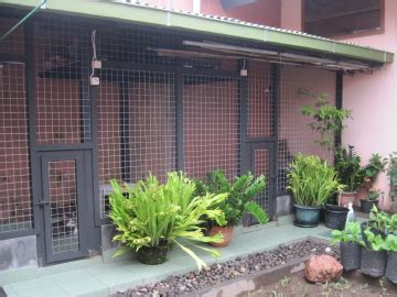 Kandang Kucing Indoor perlengkapan kucing
