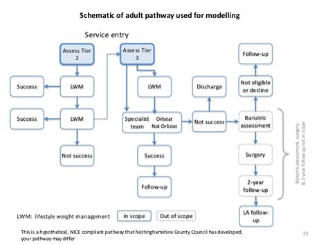 weight management tiers modeling an integrated system for obesity weight management
