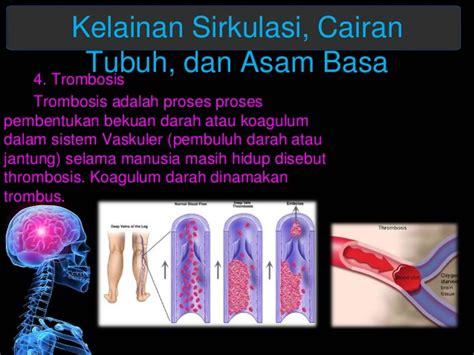 Soflens Dapat Tempat Soflens Dan Cairan sirkulasi darah cairan dan asam basa dalam tubuh