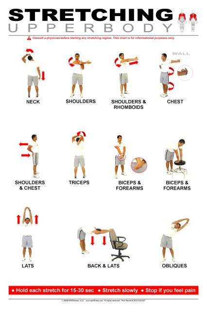 upper body stretching poster 24 quot x 36 quot