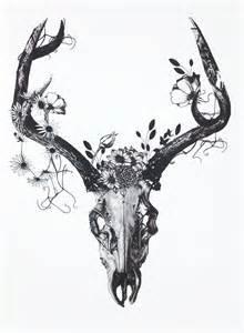 best 25 deer skull drawing ideas on pinterest deer