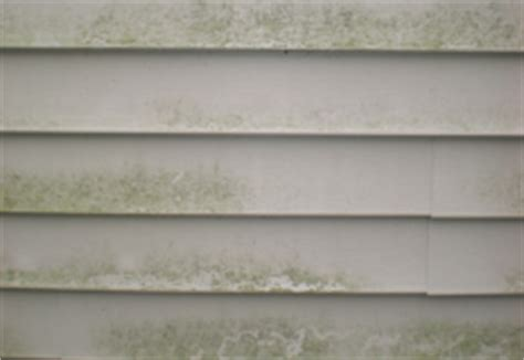 how to clean mold off house siding house washing vancouver wa fully insured professional services