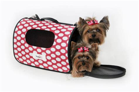 yorkie in a bag a carrier for your yorkie yorkie splash and shine