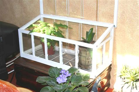mini indoor greenhouse with light quiz how much do you about small indoor