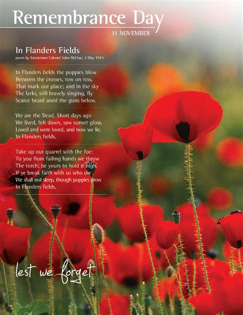 remembrance day in flanders fields a war poem written
