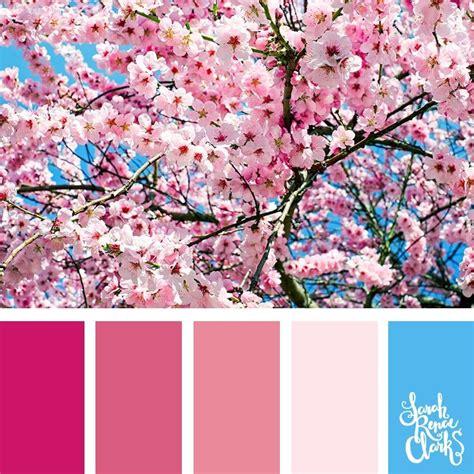 color palette inspiration best 25 pink color schemes ideas on
