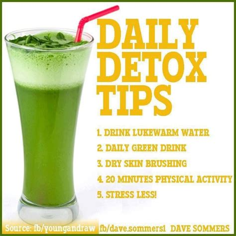 Is It Safe To Detox Everyday by Daily Detox Juice Recipe Dishmaps