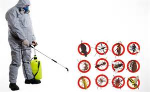 The Bedroom Store Hours Dealdey Professional Cleaning Amp Fumigation Service