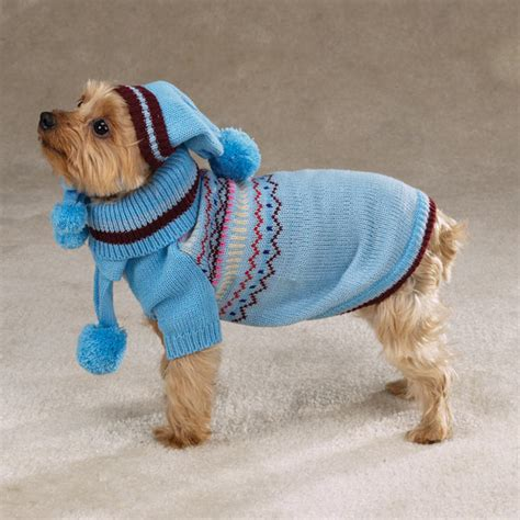 puppies in sweaters sweater puppies page 7