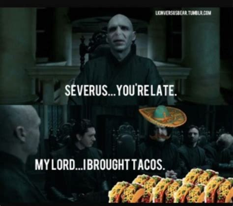 Hp Memes - i m a slytherin and funny hp memes babycenter