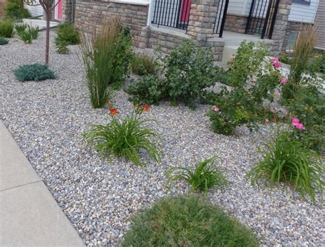backyard maintenance low maintenance rock garden ideas image mag