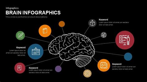 Brain Infographics Powerpoint And Keynote Template Slidebazaar Brain Ppt Template