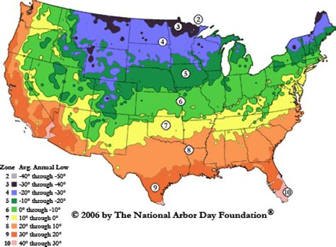 climate zones for gardening 1b study of a maple tree