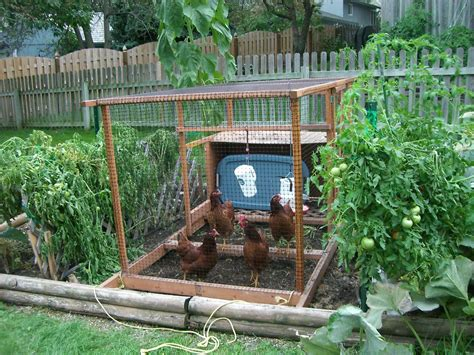 pictures of backyard vegetable gardens small vegetable garden ideas backyard vegetable garden ideas beauty garden