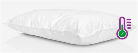 cuscini di piuma cuscino piuma d oca