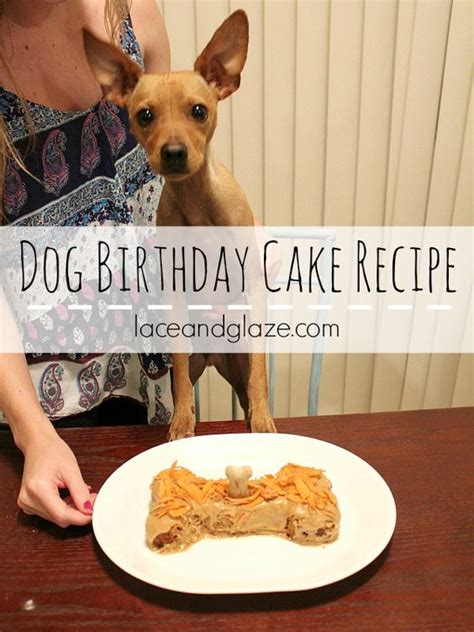 can dogs eat cake the world s catalog of ideas