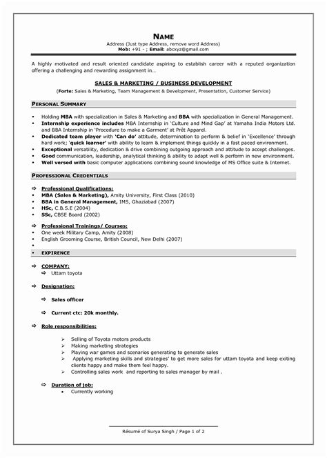 resume format summary 13 luxury sle resume summary statement resume sle