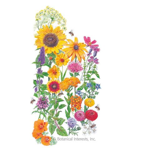 save  bees flower mix seeds view  flowers