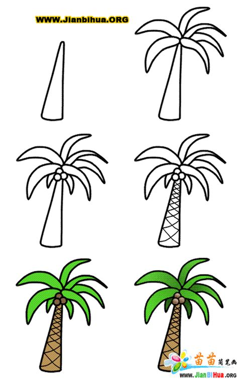 how to create palm tree in doodle god 如何画椰子树简笔画图片教程