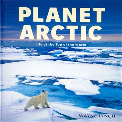 book themes for january 12 best images about preschool arctic animals on