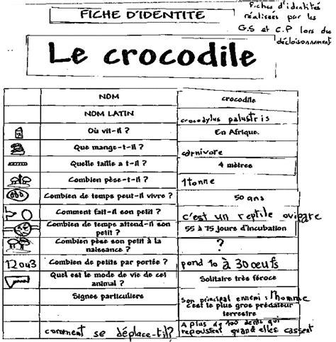 Fiche d'identité du crocodile