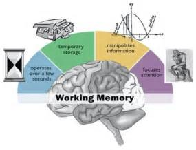 expand working memory your brain s bandwidth nextbrain