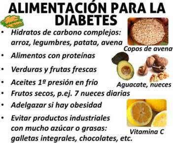 blog de plantas alimentos  la diabetes