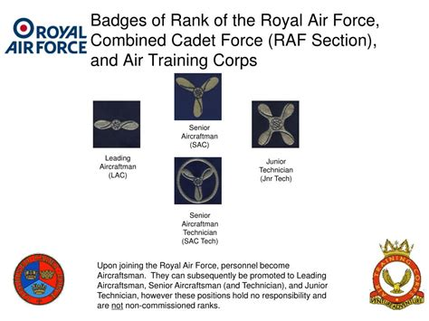 section officer coaching classes ppt british armed forces badges of rank including