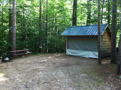 Small Cabin Home adirondack shelter white birches camping park