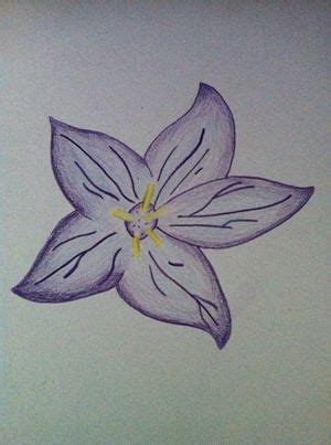 libro colour my sketchbook bloom flower sketch colour by revolutionalxd on