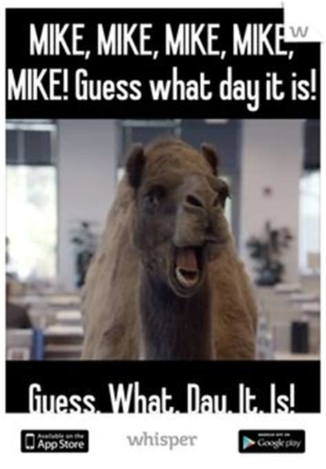 Mike Meme - 1000 images about hump day on pinterest hump day