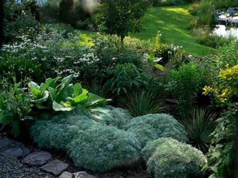 moon garden rooting for ideas