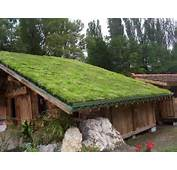 What You Didnt Know About Green Roofs  Conscious Living TV