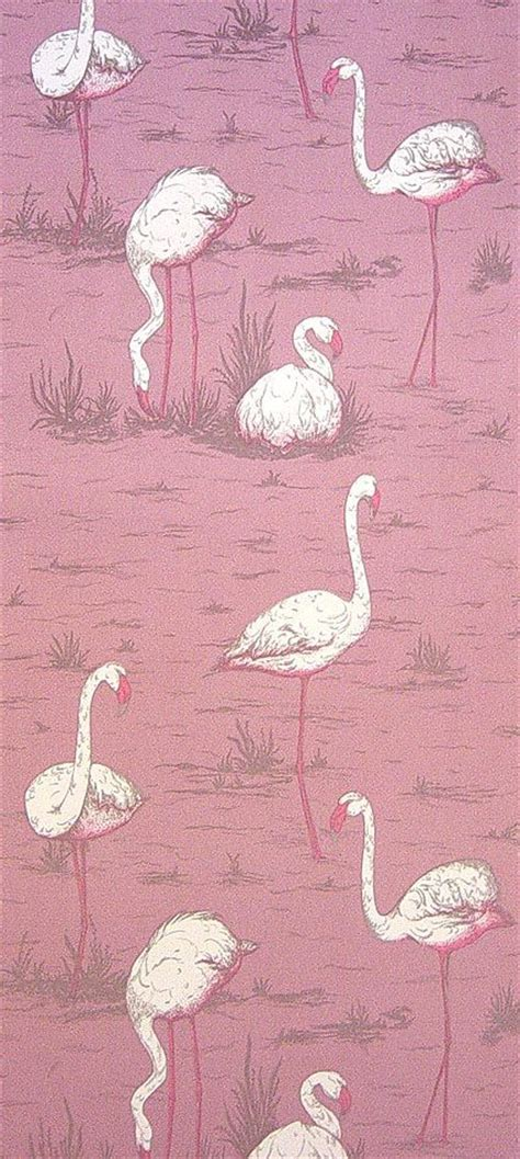 wallpaper with pink flamingos pinterest discover and save creative ideas